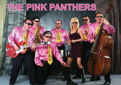 THE PINK PANTHERS